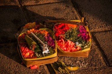 Offerings to the spirits of the beach locals. Bali