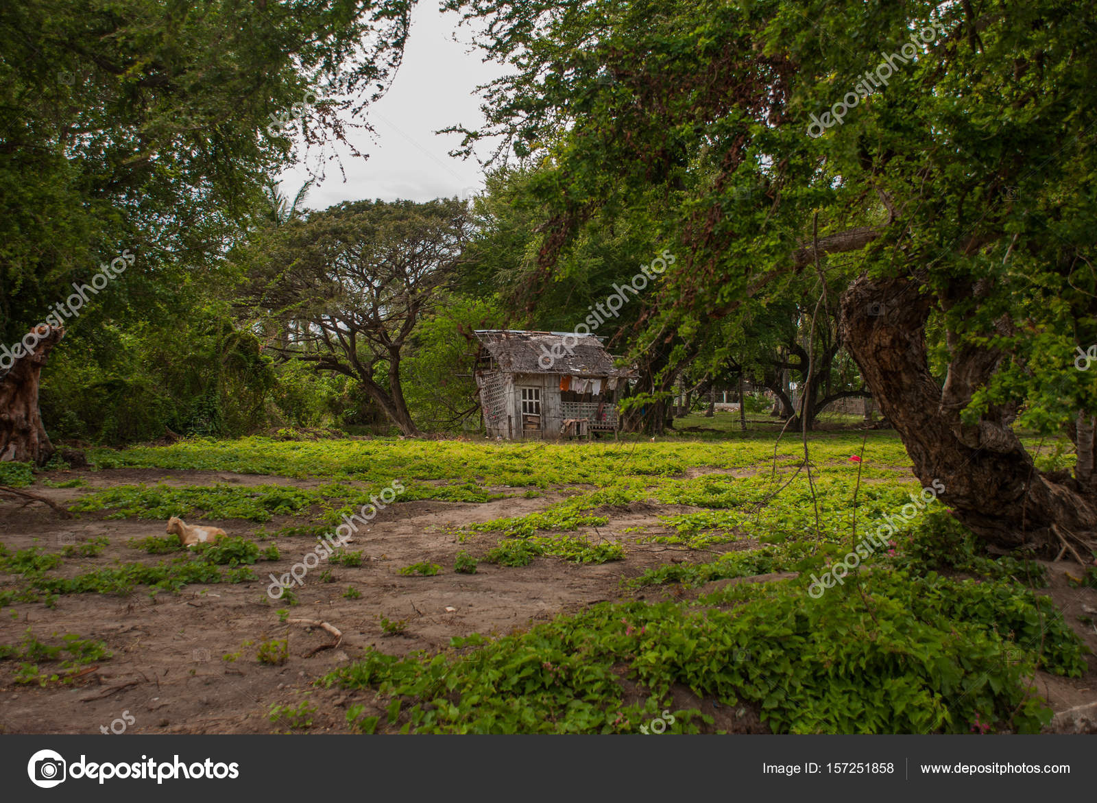Small Wooden House Design Philippines Small Local Old