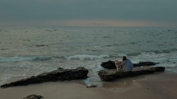 man making proposal to his girlfriend sending husky dog with ring. Engagement on beach
