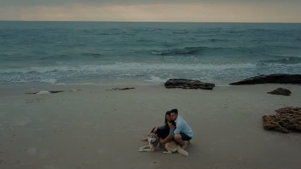 Luftaufnahme des jungen Brautpaares zu Fuß am Strand mit husky Hund