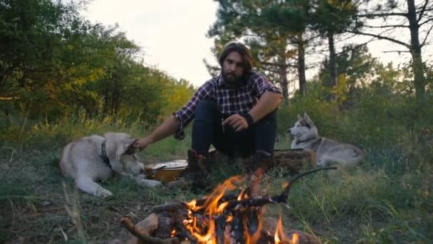 muž sedící s psi sibiřský husky u ohně v lese při západu slunce