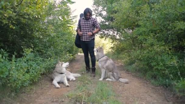 ember játszik két szibériai husky kutyák-erdő