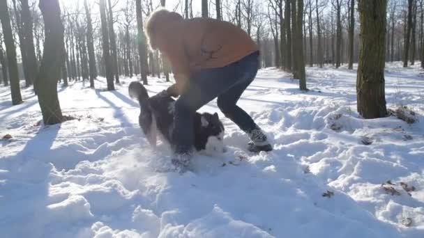 muž si hraje s sibiřský husky psa v zasněženém parku