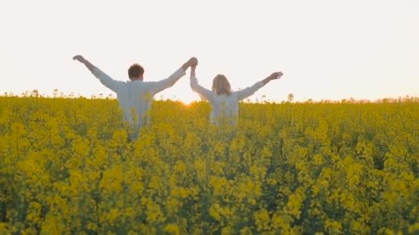 Znásilnit šťastný mladý pár v žlutá zelená louka