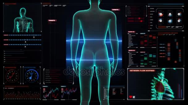 Il corpo femminile reni nel dashboard di display digitale di scansione. Vista dei raggi x, Hd
