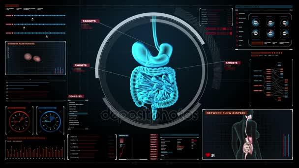 Zooming body scanning internal organs digestion system in digital zooming body scanning internal organs digestion system in digital display x ray ccuart Images