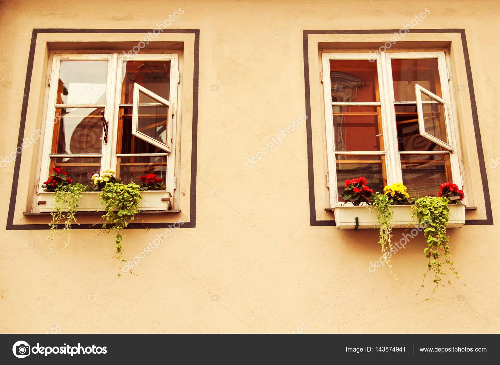 Windows With Flowers On The Windowsill Outside U2014 Stock Photo