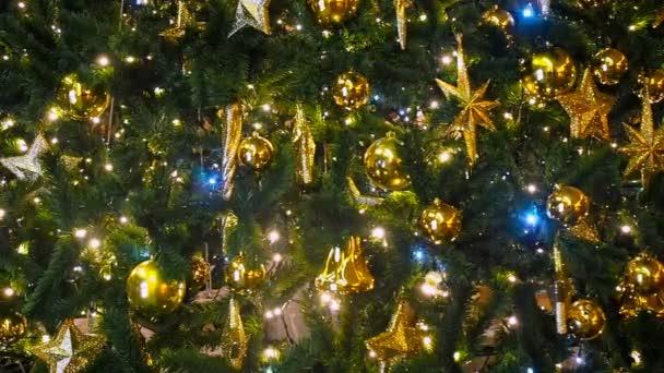 Vánoční stromky, třpytící se v noci s mimo zaměření pozadí zblízka. Nový rok strom dekorace a osvětlení. Vánoční strom dekorace pozadí