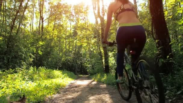 Dívka na kole v parku. Sportovní dívka na kole s pejskem v lese