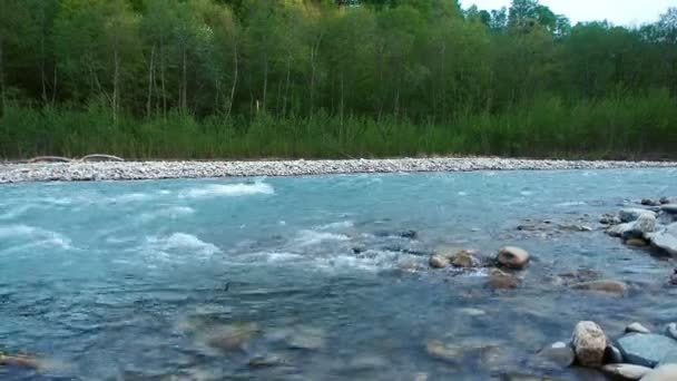 Clean Mountain River With a Strong Current Flows Rapidly From the Mountains of the Caucasus. Evening