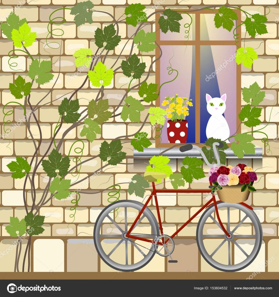 Bike under window — Stock Vector © Minaieva #153604532