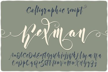 calligraphic script font named