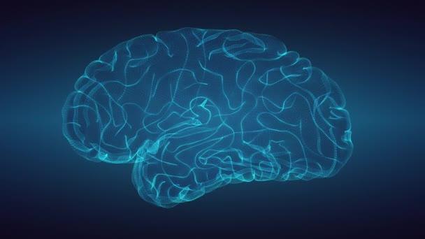 Glowng mozek absolvoval tmavém pozadí