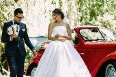Fotografie Nevěsta šaty a ženich s kyticí