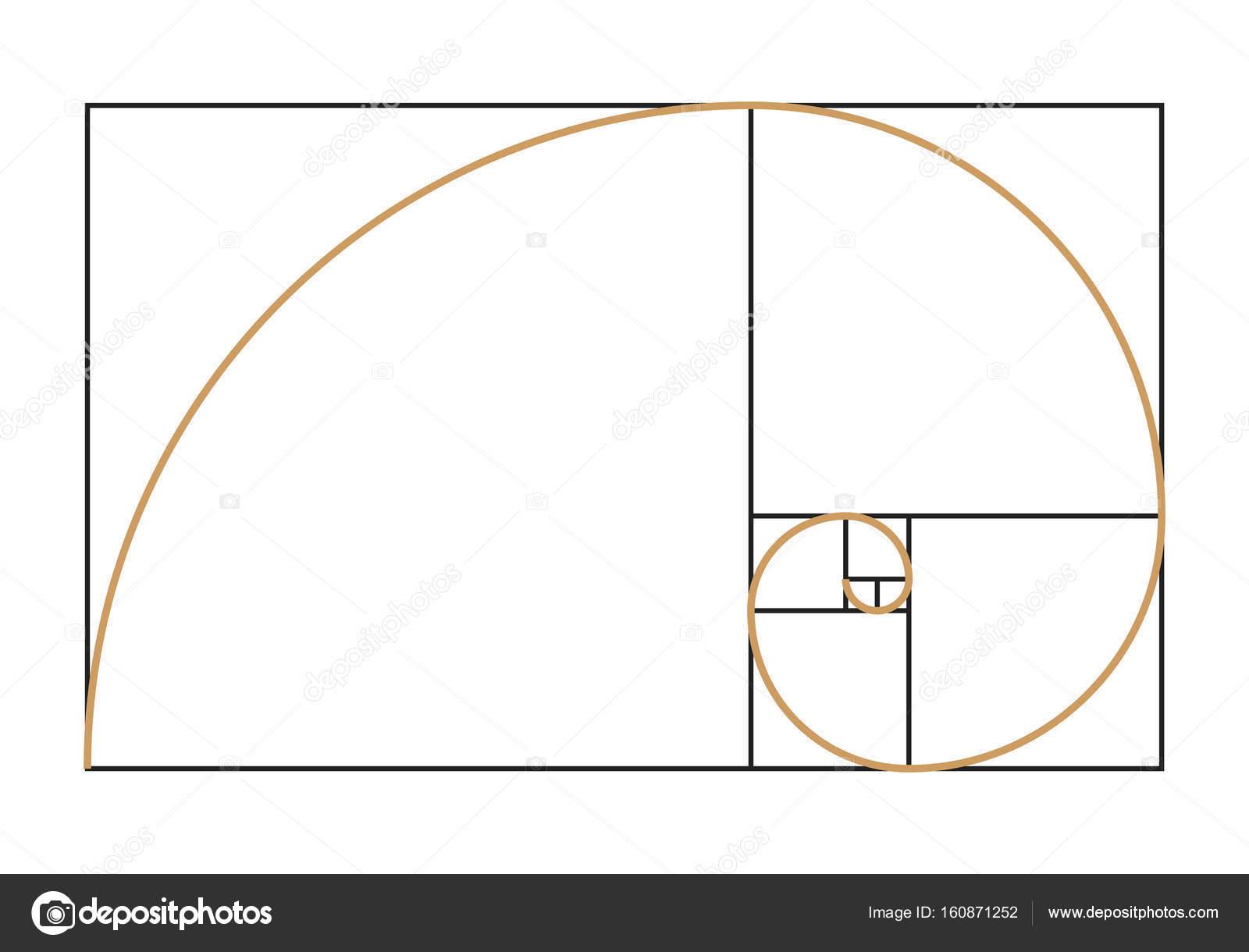 Imágenes: fibonacci | Símbolo de la espiral de Fibonacci — Vector de ...