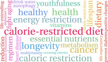 Calorie-Restricted Diet Word Cloud