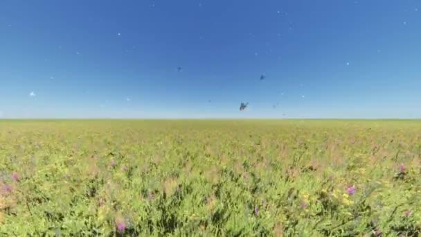 4 k motýl létající nad Barva květu  trávy ve větru, přírodní scenérie, plovoucí Pampeliška.