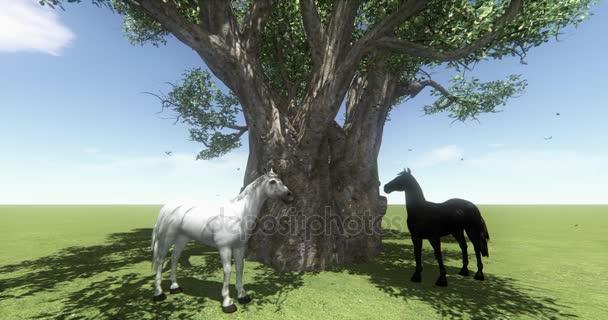 4 k bílém koni  černém koni pod velký strom, motýl  pták letící, hříbě pet, Farma zvířat volně žijících zvířat