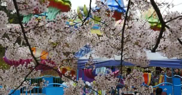 Čína-Duben 09, 2017:4 k park hřiště proti sakura pozadí, třešňových květů v Číně