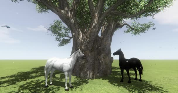 4k white horse & black horse under big tree,butterfly & bird flying,float Dandelion,foal pet,farm animal wild life.