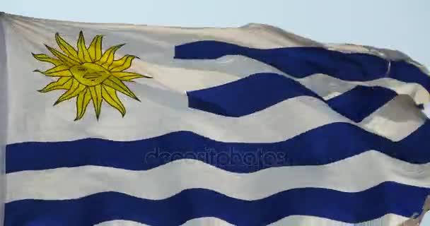 bandiera di Uruguay 4 k sta fluttuando nel vento.