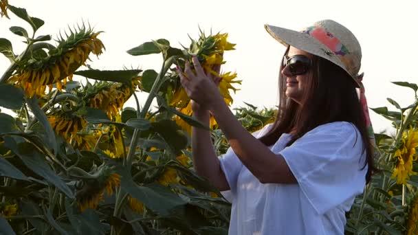 Žena se těší na slunečnicová pole v letním dni
