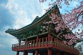 Photo buddhist temple at Jeju Korea