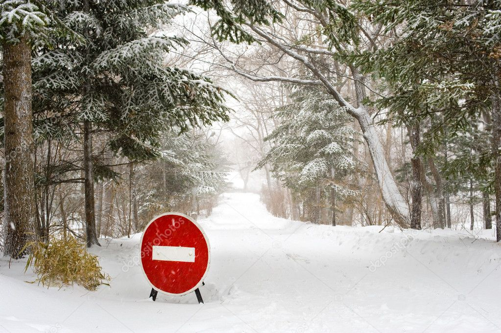Stop Sign on winter forest Road