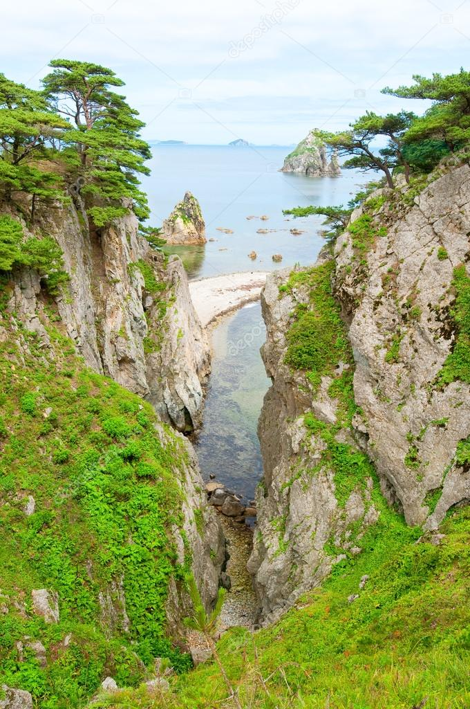 Far East Marine Reserve in Russian Primorye
