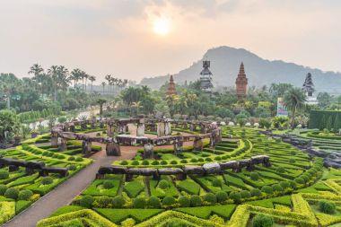 Nong Nooch Tropical Botanical Gardenat sunrise , Pattaya, Thaila