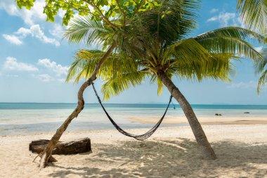Hammock and palms on the beach resort at Koh Samui Island Thaila