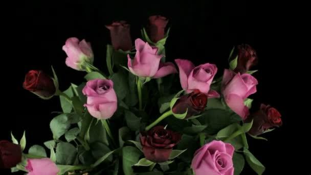 Rotující větev s poupaty růží