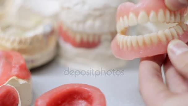 Klicken Sie vor dem Hintergrund der Modelle der Zähne Kunstzähne