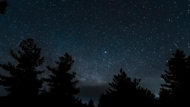 Universe galaxy milky way in starry sky