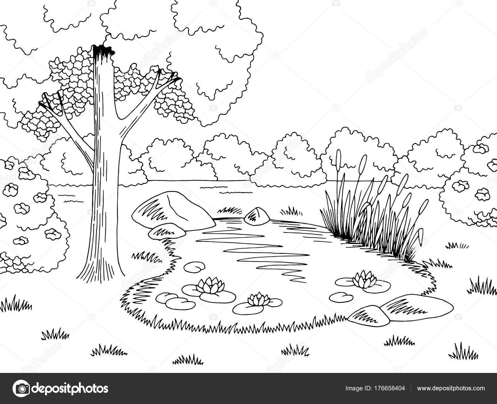 pond graphic black white lake landscape sketch illustration vector  u2014 stock vector  u00a9 aluna11