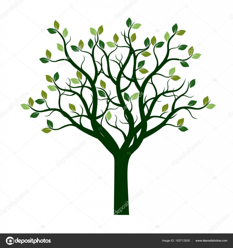 Color Tree with Leaves. Vector Illustration. — Stock Vector ...