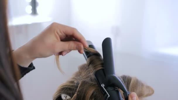 Profesionální kadeřník dělá účes pro ženu - jejich kadeře