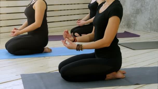 Krásné mladé ženy těší jógu doma