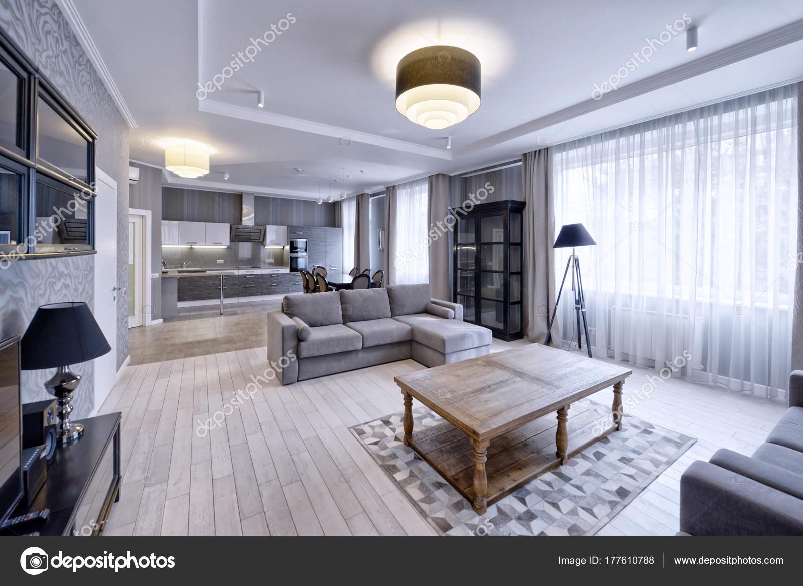 Modern Design Interior Living Room Luxury Apartment Gray White Tones U2014  Stock Photo