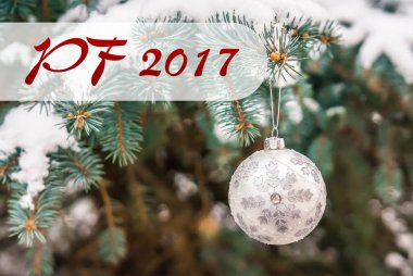 PF 2017 - Silver Christmas ball on a snow-covered branch