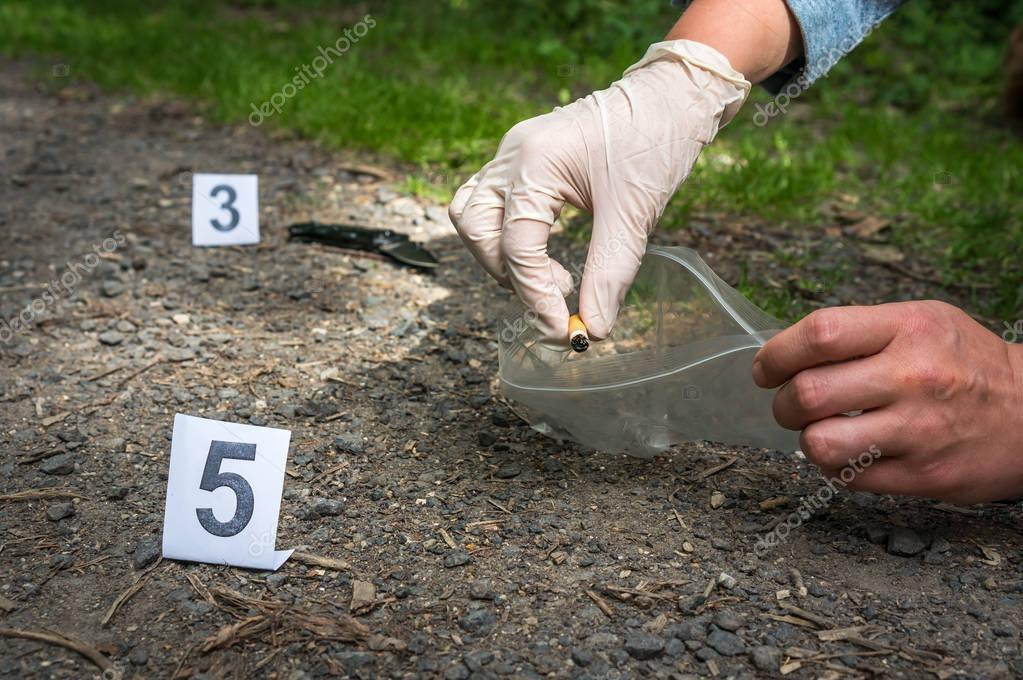 Investigator collects evidence - crime scene investigation