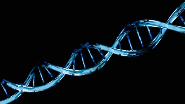 DNA molecule structure isolated on black - genetic code concept