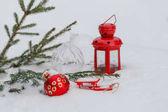 Červená Vánoční cetka visí na větvi bílá borovice v zimě ag