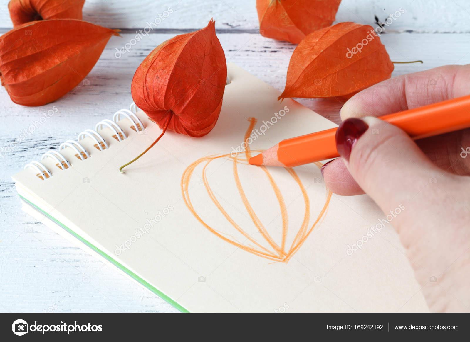 Nahaufnahme Der Hande Zeichnen Ein Herbst Blatt Herbst Le Bedeckt
