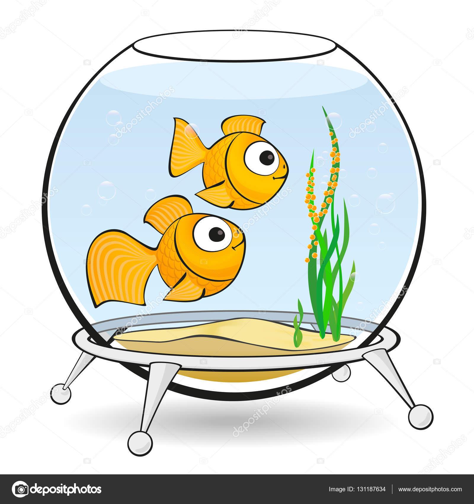 Pesci rossi di coppia in un acquario con caviale foto for Vaschetta per pesci rossi prezzi