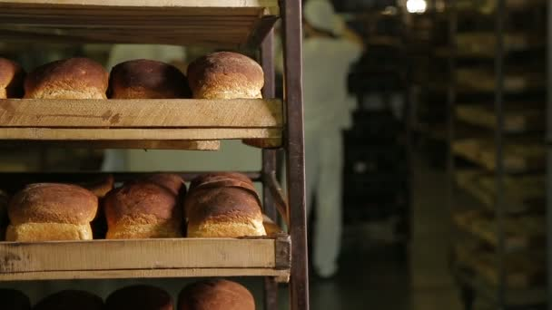 Working in a bakery