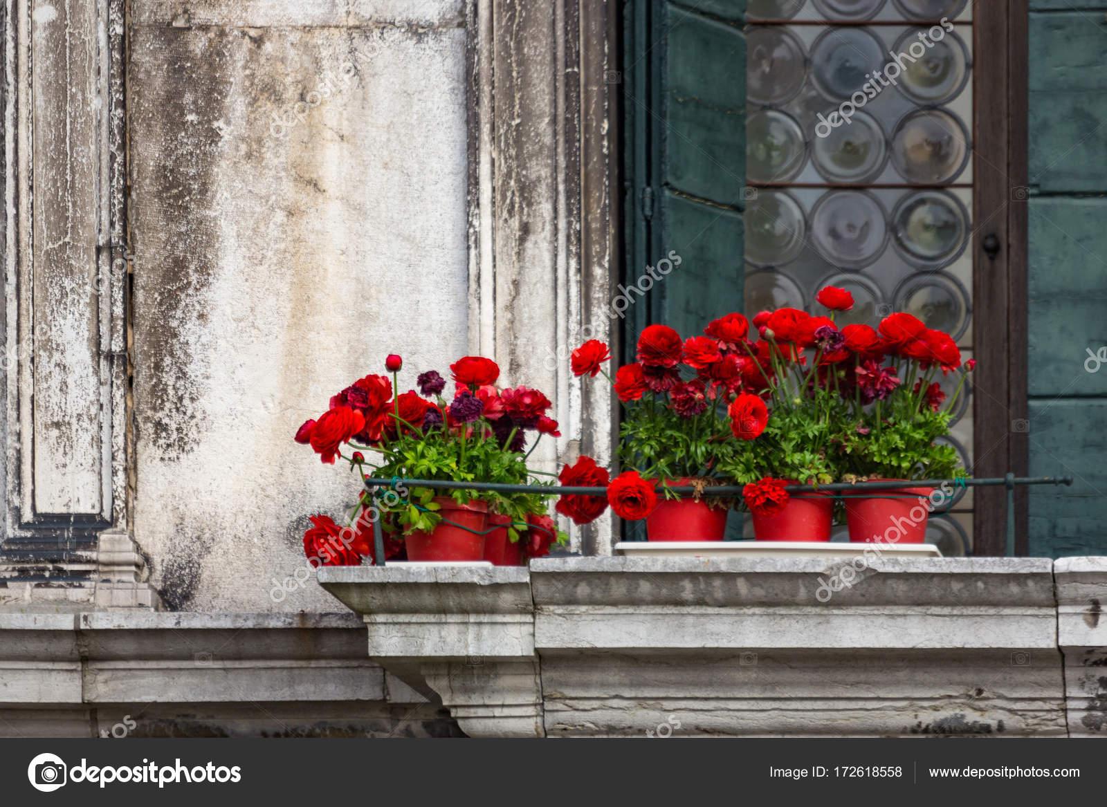 Rote Blumen Auf Einem Vintage Balkon In Venedig Stockfoto C Sid10