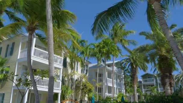 Tall palm trees near an apartment building.