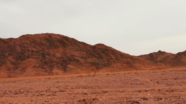 Červené pouštní krajina hory Sinaj