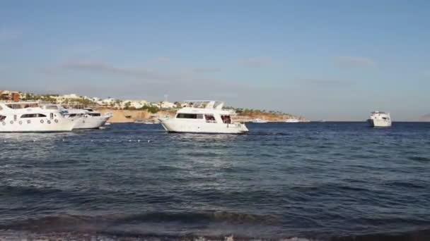 Sharm el-Sheikh, Sharks Bay, Egypt mnoho krásné bílé jachty